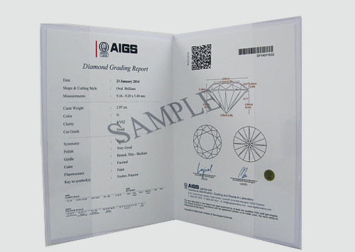 AIGS: AIGS Laboratory Report